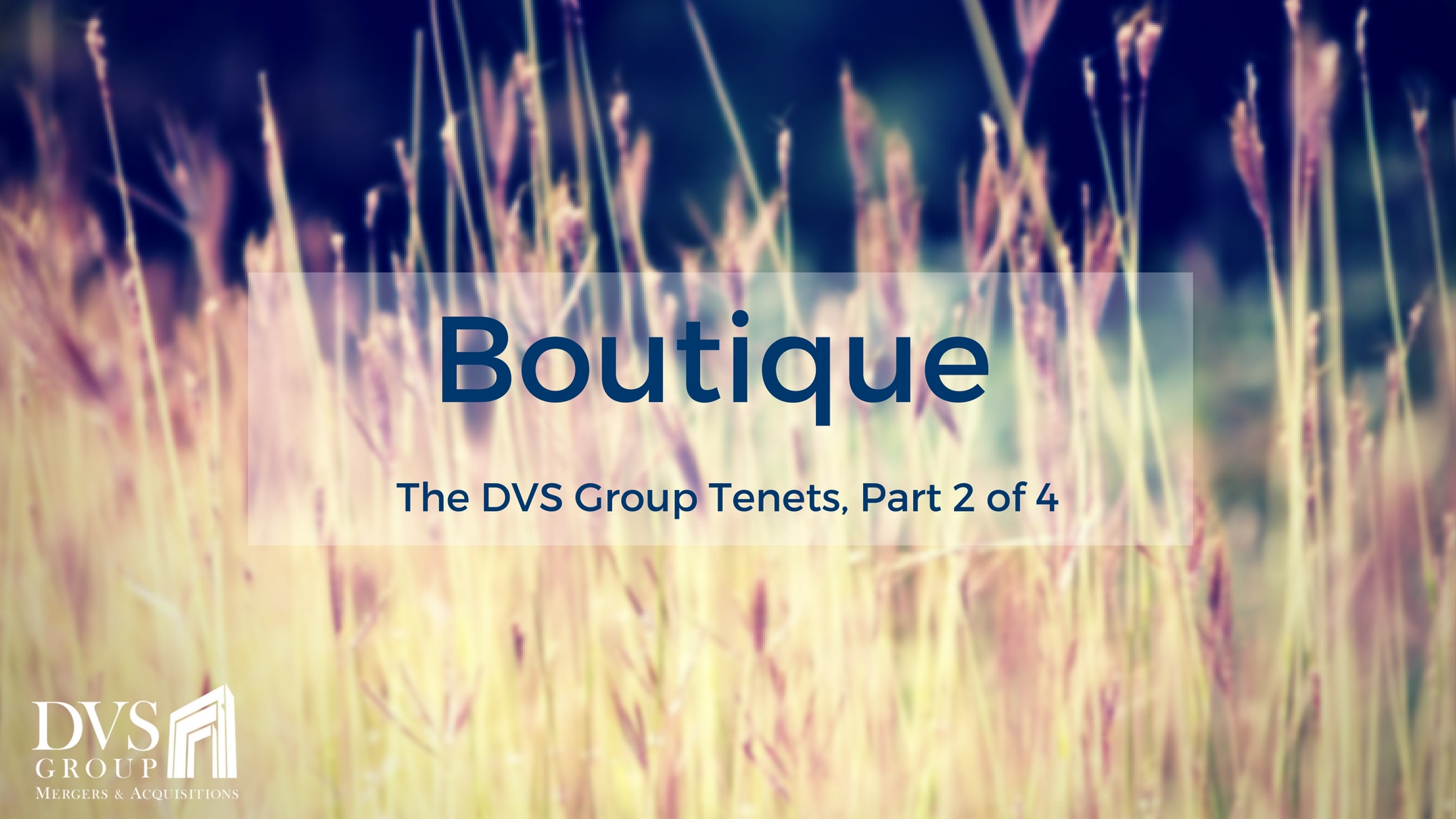 The DVS Group Tenets - Boutique