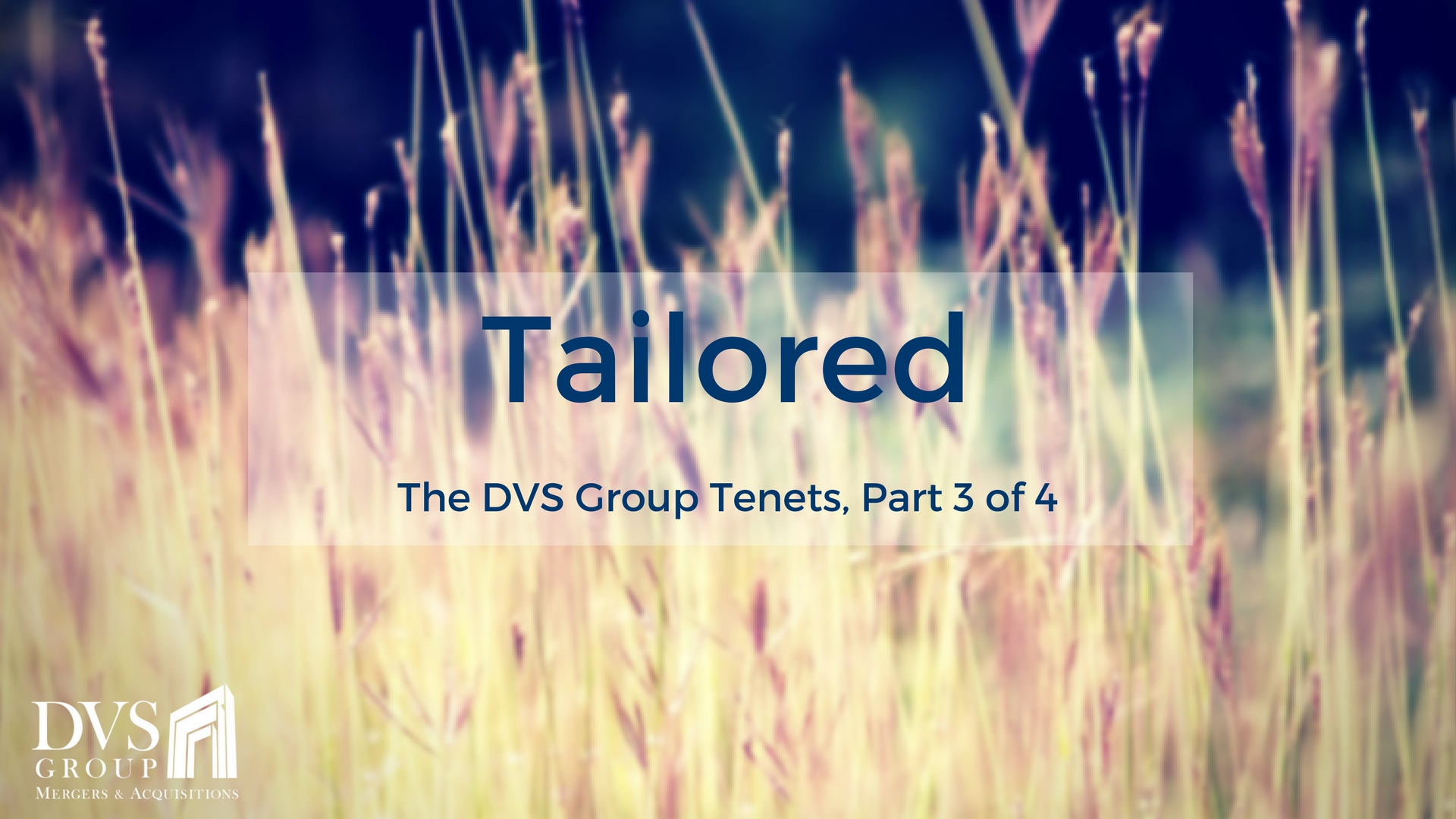 The DVS Group Tenets - Tailored